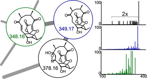Molecular Networking as a Dereplication Strategy | Chemistry Project | Scoop.it