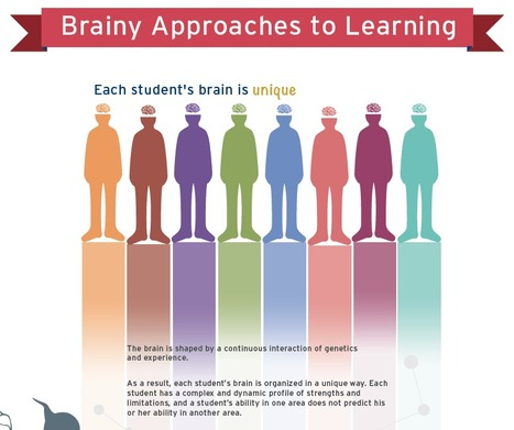 Brainy Approaches to Learning Infographic | Students at the Center | UDL - Universal Design for Learning | Scoop.it