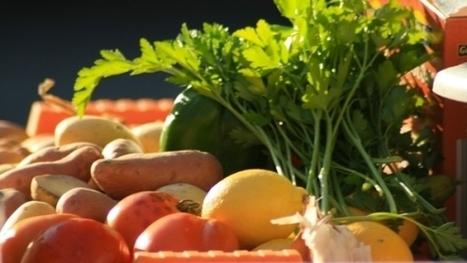 Le 1er marché 100% local et 100% bio à Epinal | Événements et développement durable | Scoop.it