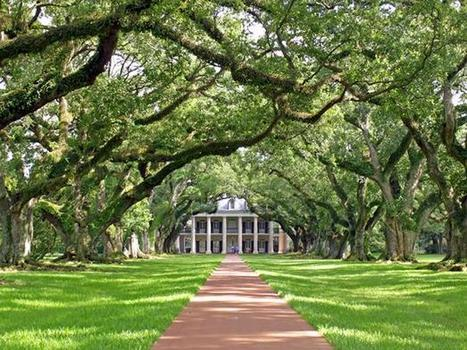 Escape to Louisiana | Oak Alley Plantation: Things to see! | Scoop.it
