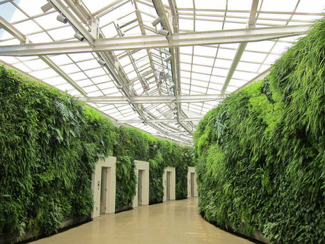 The Rise and Rise of Green Walls - Eluxe Magazine | Jardines Verticales y azoteas verdes. | Scoop.it