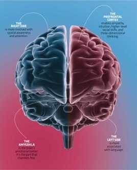 3 Scientifically Proven Ways to Optimize Your Brain | Interesting things :) | Scoop.it