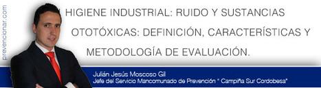 Ruido y sustancias ototóxicas: definición, características y metodología de evaluación | El Diario de PrevenControl | Scoop.it