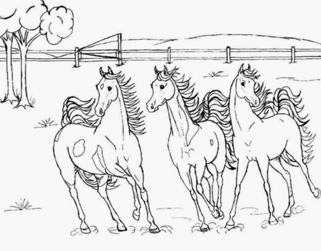 horses printable coloring pages | Printable coloring pages | Scoop.it