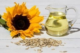 Sunflower oil helps to create a protective laye | sunflower oil | Scoop.it