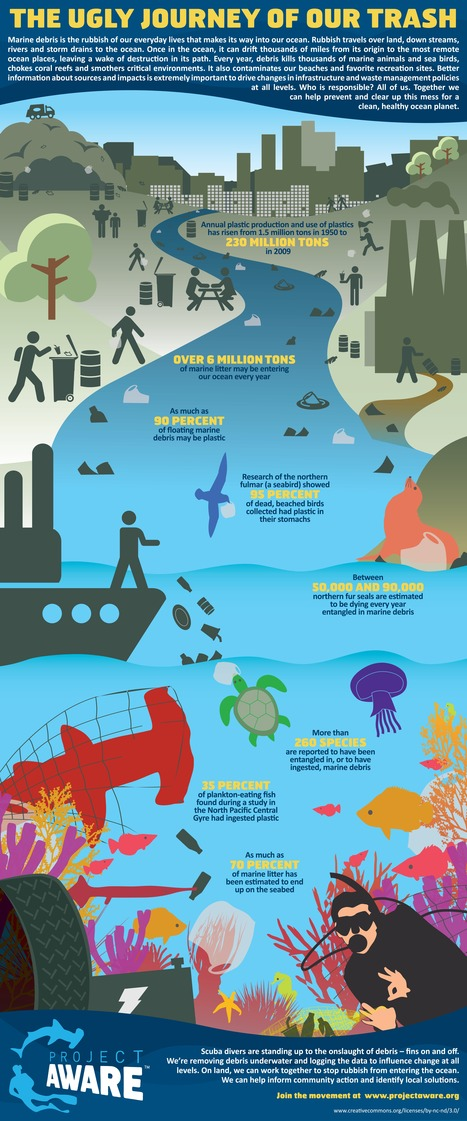 The Ugly Journey Of Our Trash @projectaware | nomad ocean adventures rock | Scoop.it