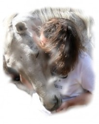 NEW HOMEOPATHIC TELECONFERENCE: First Aid for HORSES | Holistic Horses from PENZANCE Equine Integrative Solutions | Scoop.it