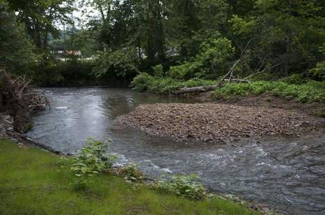 Stream bank restoration completed on local creeks | TribLIVE - Tribune-Review | Fish Habitat | Scoop.it