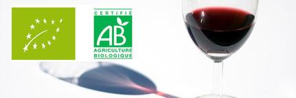 Vin bio, vin traditionnel : quelles différences ? - consoGlobe | Ma Cave En France | Scoop.it