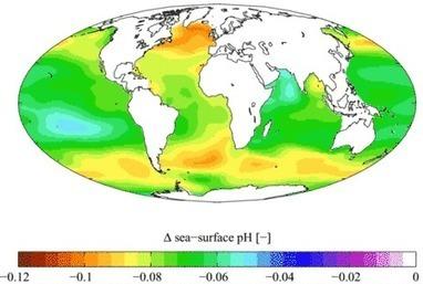 Acidification des océans : nitrates et phosphates sont aussi en cause | Toxique, soyons vigilant ! | Scoop.it