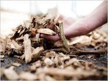 La plus puissante centrale biomasse inaugurée en Aquitaine - Batiactu | BIENVENUE EN AQUITAINE | Scoop.it