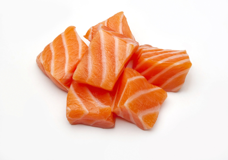 Is Genetically Engineered Salmon Safe? | DESTROYING OUR HEALTH | Scoop.it