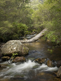 Catchments and Water | Catchments and Water | Nature & People | Great Eastern Ranges Conservation Corridor Initiative | POPULATION ACCELERATION AND LIVEABILITY | Scoop.it