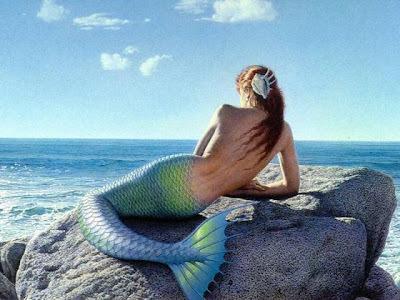 Confirmé par le gouvernement des États-Unis: pas de sirènes   Pêche et chasse sous-marine Beuchat   Scoop.it