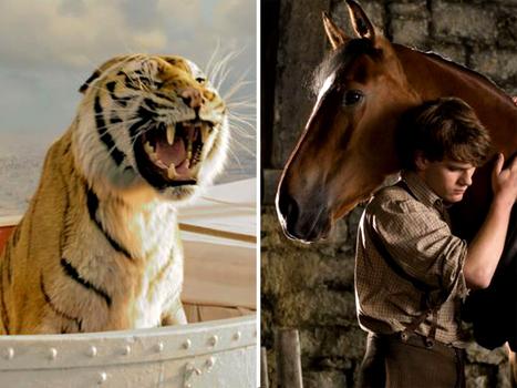 """""""Aucun animal n'a été maltraité"""" : Hollywood nous ment !   divertissement   Scoop.it"""