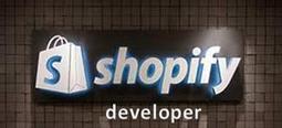 Shopify Developer | IT developer | Scoop.it