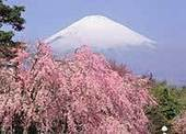 Explore Japan - Kids Web Japan | Foundation: Exploring Japan | Scoop.it
