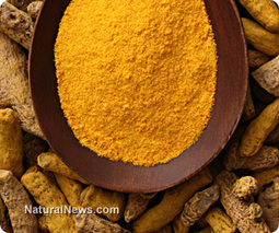 Six ways turmeric heals your overburdened body | Foodies (Rawism, Vegetarianism, Veganism) | Scoop.it