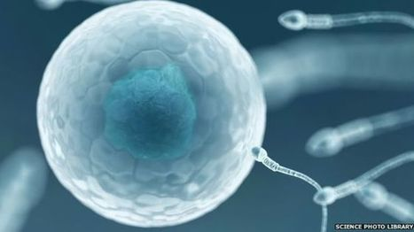 UK national sperm bank has just nine donors - BBC News | The future of medicine and health | Scoop.it