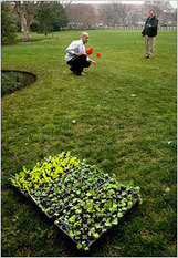 Obamas Prepare to Plant White House Vegetable Garden - NYTimes.com | Childhood Obesity | Scoop.it