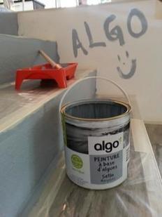 Algo Paint : le crowdfunding pour développer les peintures aux algues | Construction21 | Scoop.it