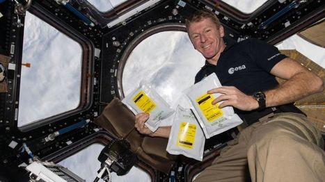 Tim Peake asks for help with space plant experiment - BBC News | Plant science | Scoop.it