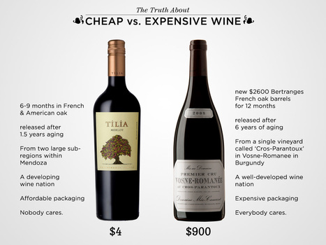 The Truth About Cheap vs. Expensive Wine | Wine Folly | Pull a Cork! | Scoop.it