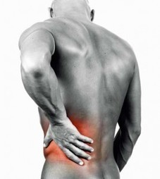 Lower Back Pain Relief Solutions | Core Strength and Fitness | Scoop.it