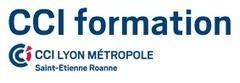 Focus sur la formation anglais à Lyon avec la CCI | Formations | Scoop.it