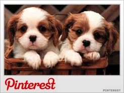 Why More Men Should Join Pinterest - TheStreet | Pinterest | Scoop.it