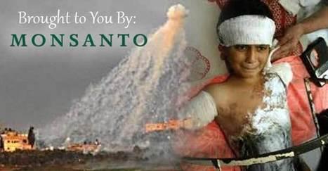 Monsanto Exposed as Source for White Phosphorus Used in Gaza Massacre | Liberty Revolution | Scoop.it
