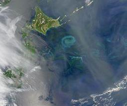 Scientists solve a 14,000-year-old ocean mystery | Sustain Our Earth | Scoop.it