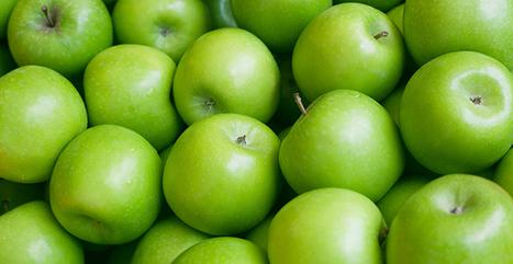Vers une offre plus qualitative en Granny Smith | Arboriculture: quoi de neuf? | Scoop.it