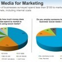 Social Media Marketing in azienda: chi lo gestisce? | Social media culture | Scoop.it