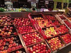 Xerfi croit au potentiel des fruits et légumes transformés | Fruits et Légumes d'Aquitaine | Scoop.it