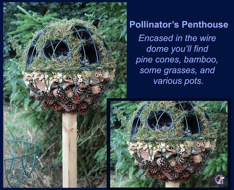 Pollinator's Penthouse | Upcycled Garden Style | Scoop.it