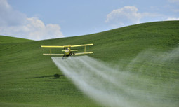 The Alarming Effects of Pesticides on Young Brains | EcoWatch | Scoop.it