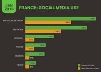 Chiffres réseaux sociaux - 2015 | Fresh from Edge Communication | Scoop.it