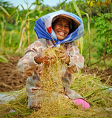 Asia Must Knock Down Gender Barriers to Secure Food Future - Study | Asian Development Bank | Year 9 Geography - Asia and its biomes | Scoop.it