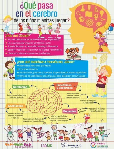 El Cerebro del Niño – Que sucede mientras Juega | Infografía | Recull diari | Scoop.it