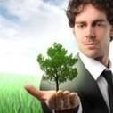 Green Economy contro la crisi del Lavoro - PMI.it | Green economy | Scoop.it