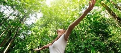 Terapia hortícola y «baños de bosque», lo último en salud   Apasionadas por la salud y lo natural   Scoop.it