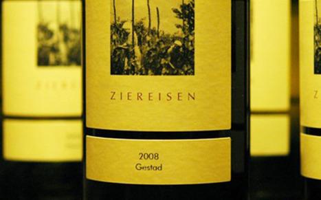Weinrallye 52: Klimawandel im Weinberg und ein Pinot Noir von Chapel Down | Weinrallye | Scoop.it