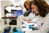 Blog: Replacing rodents in CNS studies   Alternatives and refinements to animal research   Scoop.it