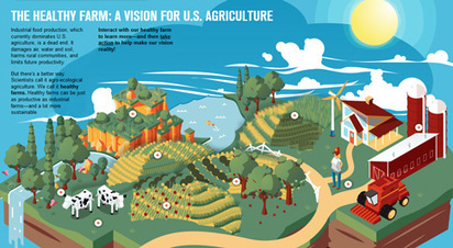 Infographic: The Healthy Farm | UCSUSA | reNourishment | Scoop.it