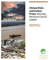 """Economics for Equity and the Environment: Climate Risks and Carbon Prices: Revising the Social Cost of Carbon   """"Environmental, Climate, Global warming, Oil, Trash, recycling, Green, Energy""""   Scoop.it"""
