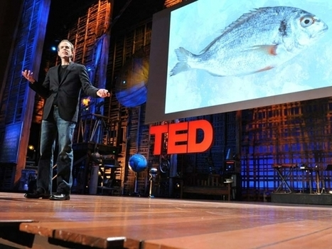 How I fell in love with a fish | Unit V Agricultural Land Usage | Scoop.it