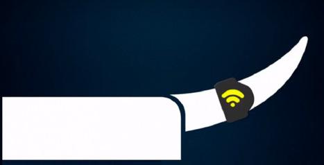 Abanometer, l'anneau connecté qui mesure la joie de ton toutou | Les dernières innovations digitales | Scoop.it