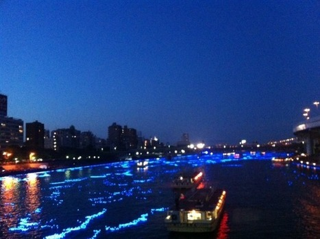 Tokyo Hotaru: Panasonic floats 100,000 LED 'fireflies' down the Sumida River   Consumer Engagement Marketing   Scoop.it