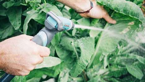 Pest-Proofing Your Garden Naturally | Gilmour | GMOs & FOOD, WATER & SOIL MATTERS | Scoop.it